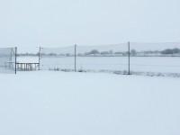 Winter_Januar_2021